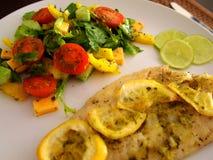 鱼在烤箱烘烤了用柠檬和菜沙拉 库存图片