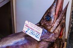 鱼在Ortigia历史市场上  免版税库存照片
