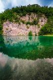 鱼在Plitvice湖中绿松石透明水  免版税库存照片