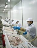 鱼处理 免版税图库摄影