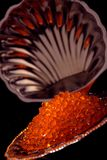 鱼子酱红色 库存图片