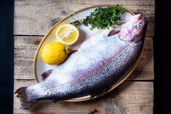 鱼宴成份 新鲜的海鳟 地中海菜单 免版税库存图片