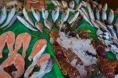 鱼市在伊斯坦布尔,土耳其 免版税库存照片
