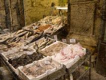 鱼市在波隆纳意大利 库存图片