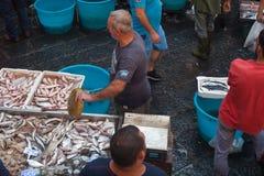 鱼市,卡塔尼亚 免版税库存图片