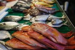 鱼市 库存照片