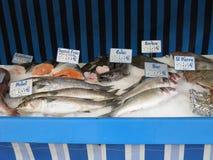 鱼市 免版税库存照片