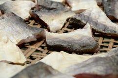 鱼干燥 免版税库存图片