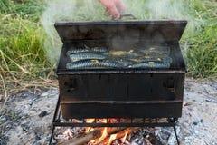 鱼抽烟的鲭鱼热户外 库存照片