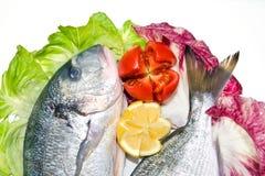 鱼新鲜的柠檬沙拉蕃茄 库存图片