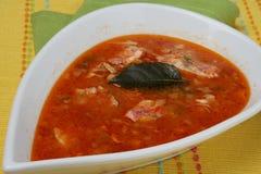 鱼新鲜的汤 库存照片