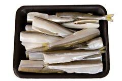 鱼无首的查出的熔炼 免版税图库摄影