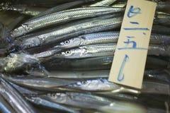 鱼日本销售额银 图库摄影