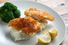 鱼晚餐 库存图片