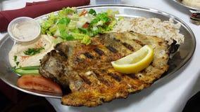鱼晚餐 免版税库存照片