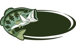 鱼比赛 图库摄影
