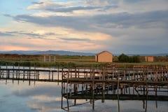 鱼池和传统捕鱼业在撒丁岛 免版税库存图片