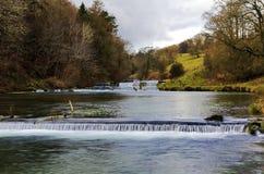 鱼池和测流堰, Lathkill戴尔 免版税库存照片