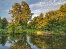 鱼池在公园的中心 图库摄影