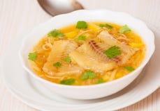 鱼汤用土豆和面条 图库摄影
