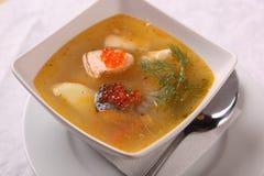 鱼汤用鱼子酱 库存图片
