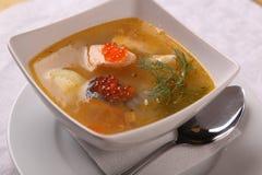 鱼汤用鱼子酱 免版税图库摄影
