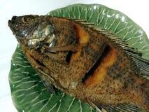 鱼油煎了 免版税库存照片