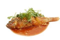 鱼油煎的石斑鱼红色调味汁蕃茄 图库摄影