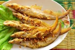 鱼油煎的进餐时间nue 图库摄影