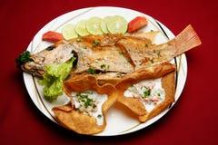 鱼油煎的黎巴嫩人 库存图片