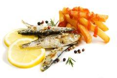 鱼炸薯条烤了沙丁鱼 免版税库存照片