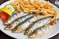鱼炸薯条烤了沙丁鱼 图库摄影