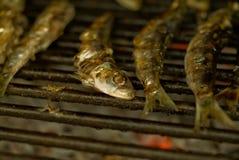 鱼烤了 库存照片