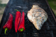 鱼烤原始 库存照片