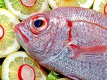鱼用柠檬 免版税图库摄影
