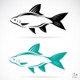 鱼的传染媒介图象 库存例证