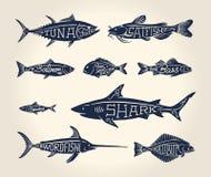 鱼的葡萄酒例证与名字的 库存照片