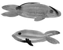 鱼符号黄道带 库存图片