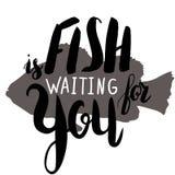 鱼等待您 免版税库存图片