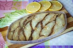 鱼罐装熏制的大比目鱼。 免版税图库摄影