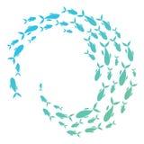 鱼色的剪影学校  一个小组剪影鱼在圈子游泳 海洋生物 也corel凹道例证向量 徽标 免版税库存照片