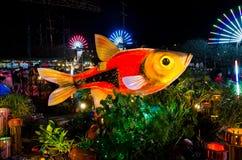 鱼节日 库存照片