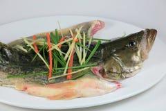 鱼蒸汽 库存图片