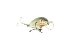 鱼诱饵 免版税库存照片