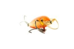 鱼诱饵 免版税库存图片