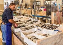 鱼贩子在Fuseta市场霍尔,阿尔加威,葡萄牙上 免版税库存照片