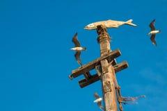 鱼雕象和海鸥 免版税库存图片