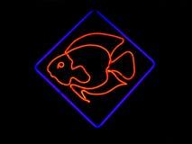 鱼霓虹形状的符号 库存图片