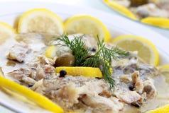 鱼食物油 免版税库存图片