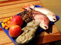 鱼食物海运 免版税库存图片